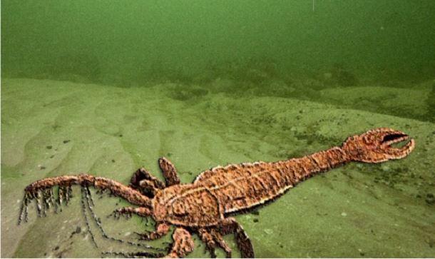 20 espèces animales exceptionnelles et terrifiantes qui sont éteintes aujourd'hui. Creatures-effrayantes-%C3%A9teintes-14