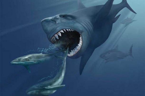 20 espèces animales exceptionnelles et terrifiantes qui sont éteintes aujourd'hui. Creatures-effrayantes-%C3%A9teintes-18