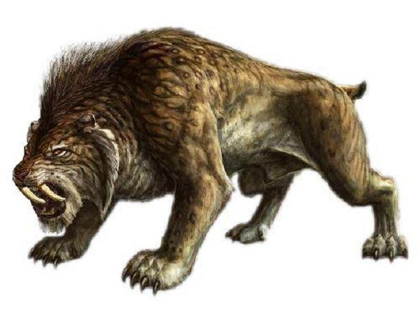 20 espèces animales exceptionnelles et terrifiantes qui sont éteintes aujourd'hui. Creatures-effrayantes-%C3%A9teintes-211
