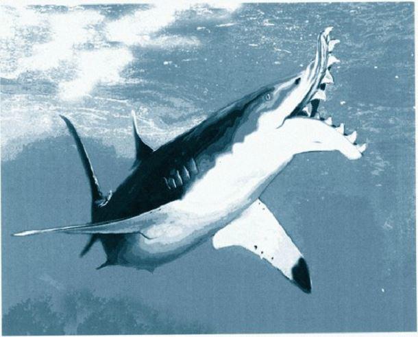 20 espèces animales exceptionnelles et terrifiantes qui sont éteintes aujourd'hui. Creatures-effrayantes-%C3%A9teintes-7