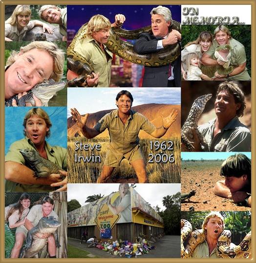 STEVE IRWIN  - The Crocodile Hunter ! Cs_crochuntermain