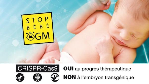 Appel à Mobilisation des Prêtres Evêques Paroisses: non-nés broyés  Stop-bebe-OGM_a