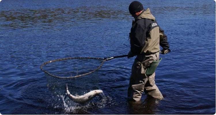 Ribolov na fotkama - Page 4 Fisherman-fishing-in-Venzuga-in-Russia