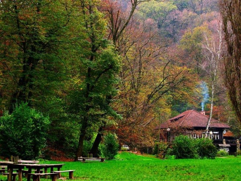 Srpski turizam - Planine 1297863218-fruska_gora2
