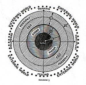 Jung : expérimentation de l'individuation pour Zébres 79ef8bcd