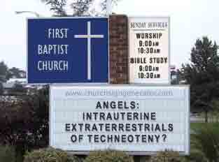 Cyberfetus Rising The Star Larvae Hypothesis: Nature's Plan for Humankind (Addendum ) Churchsign_angels
