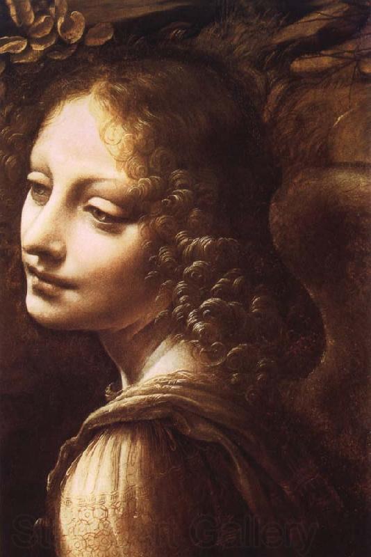Leonardo da Vinci LEONARDO%20da%20Vinci-867679