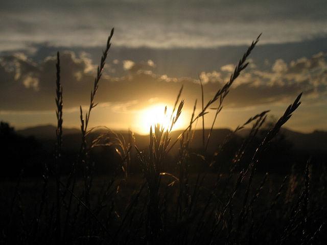 Zalazak sunca-Nebo - Page 2 08312007