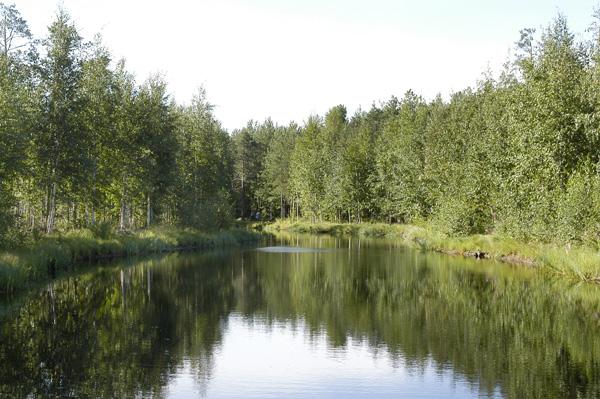 Чистое озеро 724