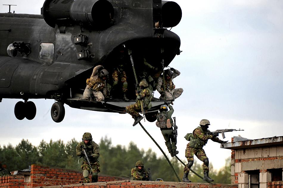 Ukrainian Armed Forces / Zbroyni Syly Ukrayiny Jackal-Stone-10
