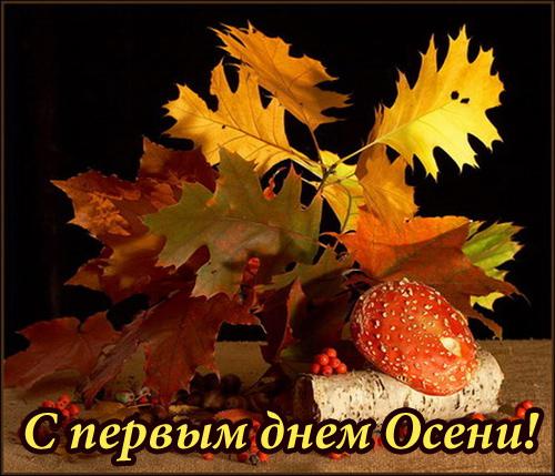 Отцвели цветы, падают листья, птицы молчат, лес пустеет и затихает.ОСЕНЬ. Osen_02