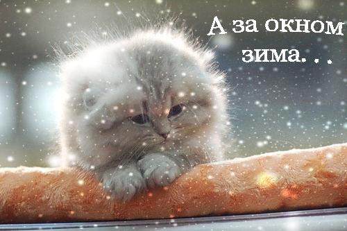 Настроение декабря - Страница 2 Zima_04