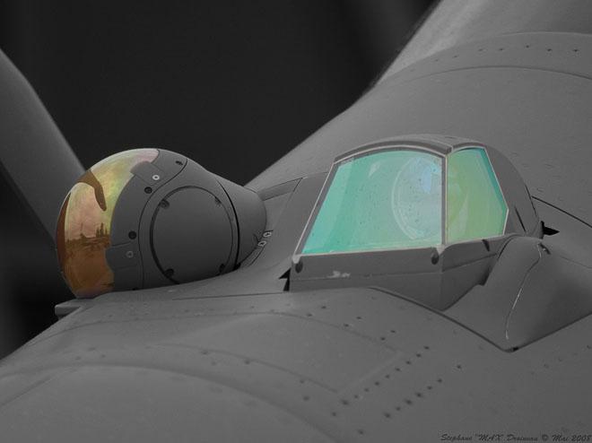 Dassault Rafale Thread Cosmopolis014_10