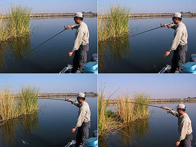 Glosario de Términos de Pesca por Vicente Castrejón Balderas y José Manuel López Pinto Piche76HC04