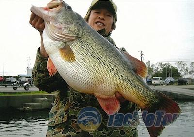 Razones del porqué el Lago Biwa en Japón tiene el Record Mundial de Lobina / Bass por José Manuel López Pinto Pictmkuritainterview16