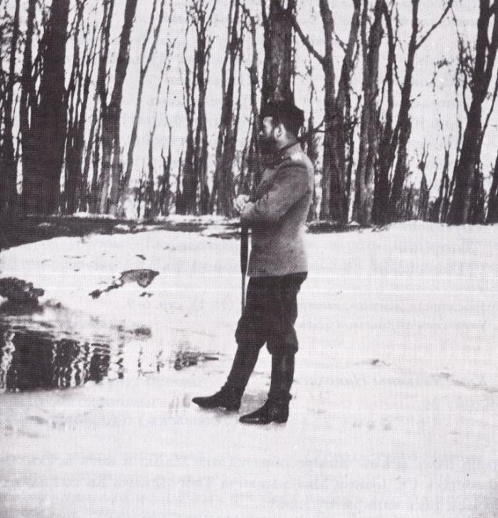 Отречение, которого не было. 1917 (700x728x123)V_Tsarskom_Sele_vskore_posle_otrechenija