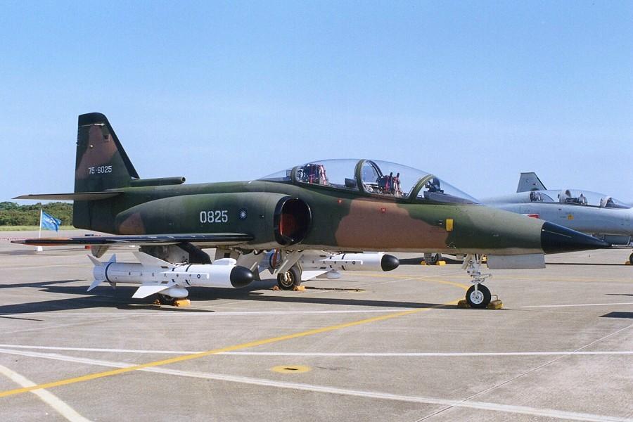 معرض تايوان للمقاتلات عرض طائرتين جديدة للتدريب   0825_ca