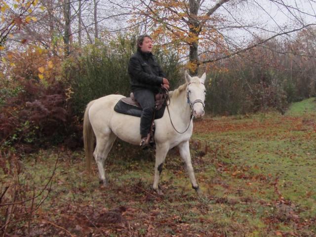 Les vacances chez Talisman Horses - Page 6 Shenoa_2011-12_02