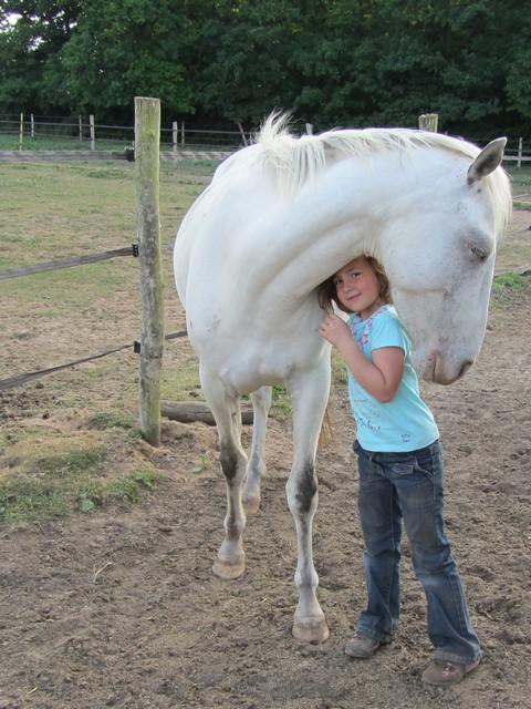 Les vacances chez Talisman Horses Shenoa_2011-05_04