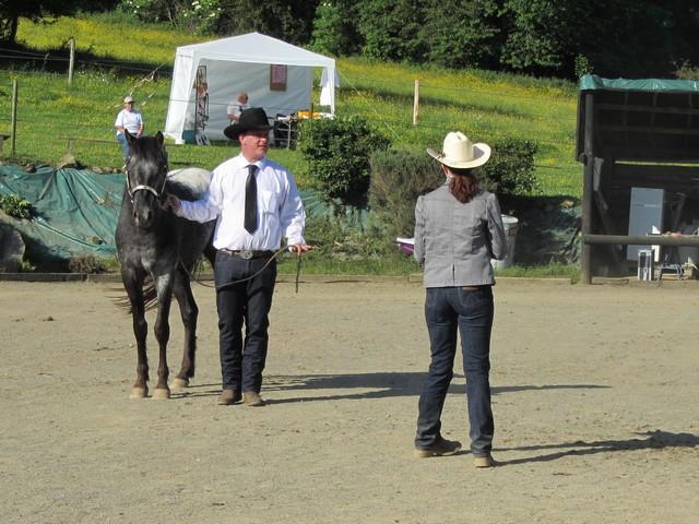 Les vacances chez Talisman Horses - Page 6 Ultimate_2012-06_03