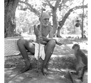ஆதி சங்கரரின் ஆன்ம போதம் - தத்துவம் - எஸ். ராமன் Ramana1_t