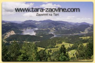 Tara Zaovine-na-tari