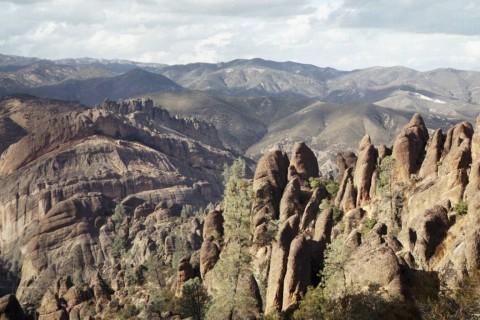 Happy Birthday Forest! Pinnacles_view
