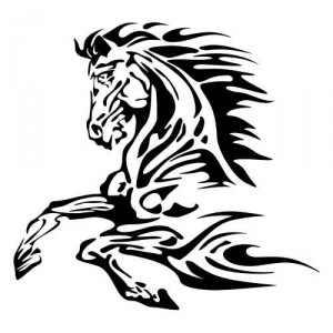Galerie de Draco  Pferd