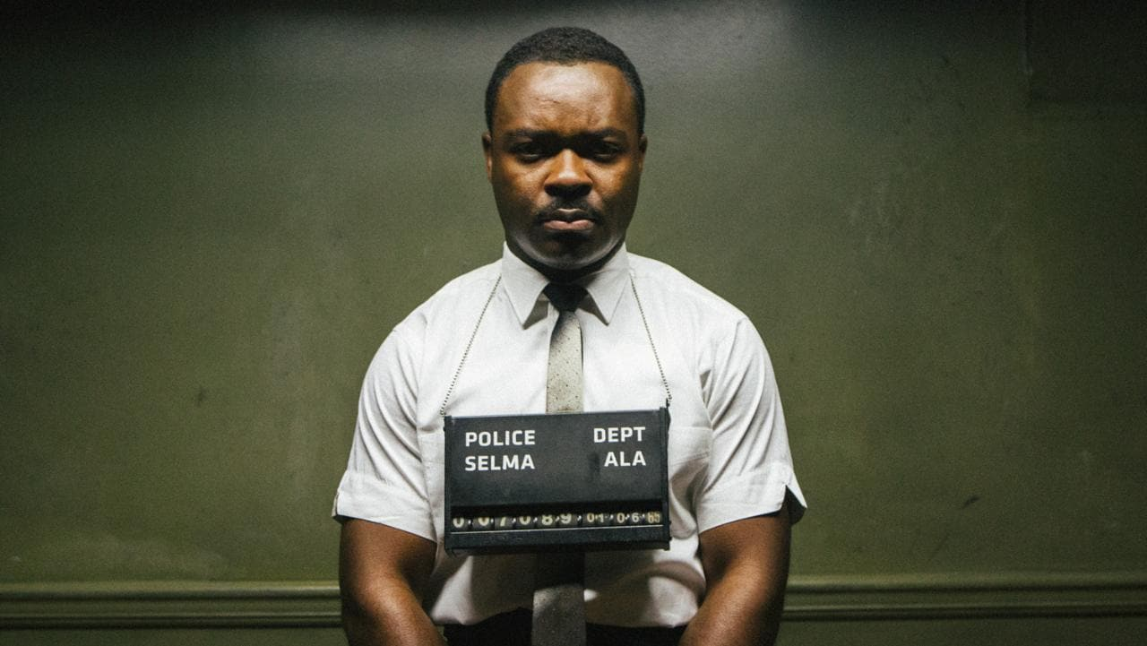 Oscars race row: were the best 40 performances of the last two years really all by white people Selma-oyelowo-xlarge
