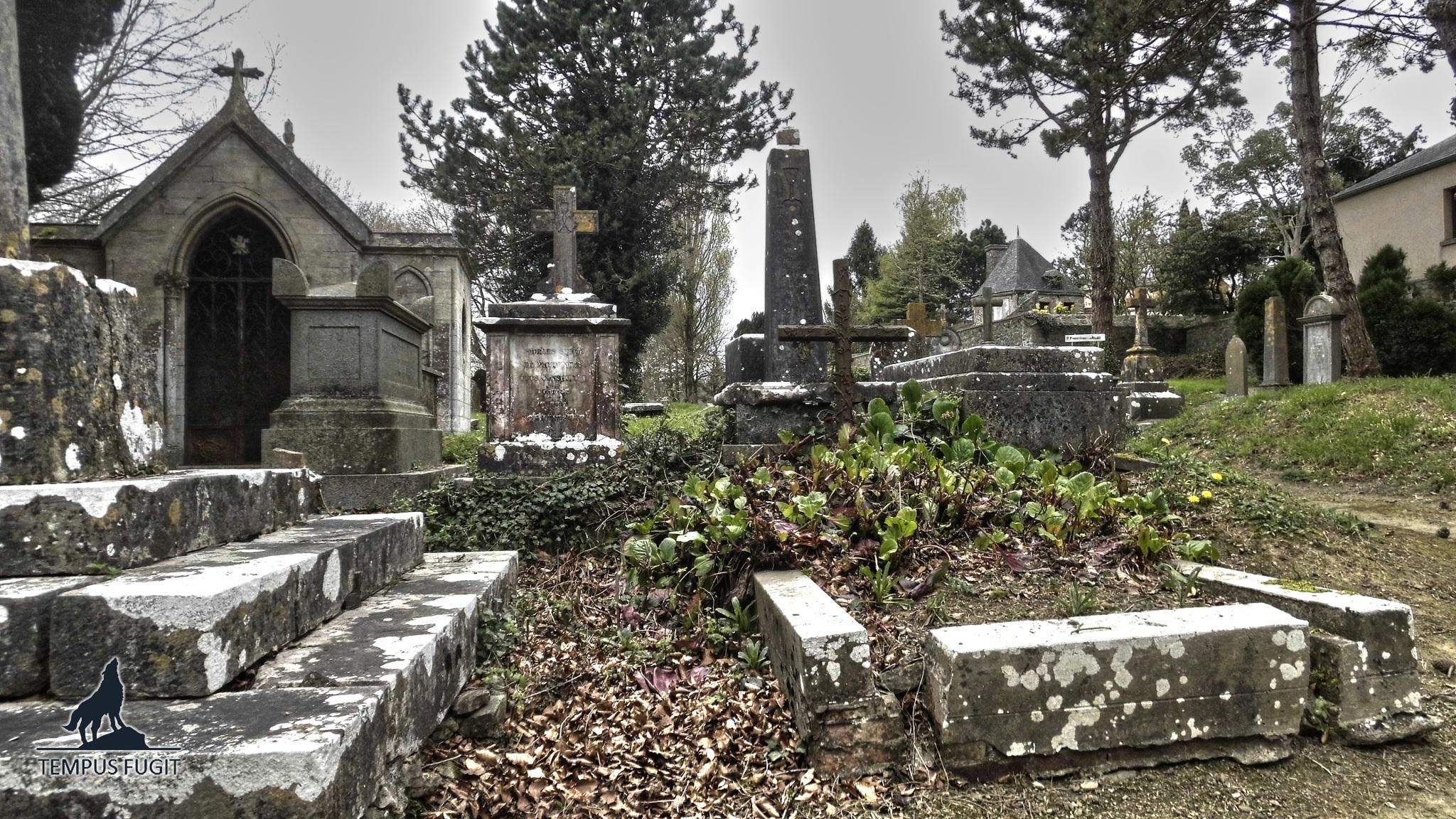 Un cimetière du XIXème siècle découvert dans un bois Urbex-cimeti%C3%A8re-abandonn%C3%A9-01