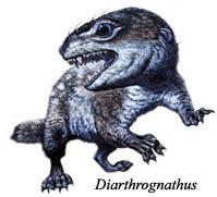 Od gmazova do hominida Diarthrognathus