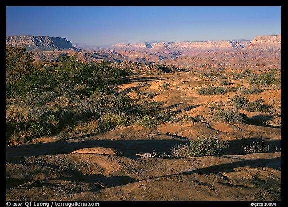منتزة غراند كانيون الوطني * في ولاية أريزونا الامريكيــــة Grca20084