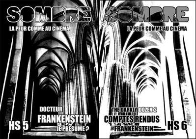 Ciné, Horreur, et JDR = Sombre - Page 13 HS5_HS6