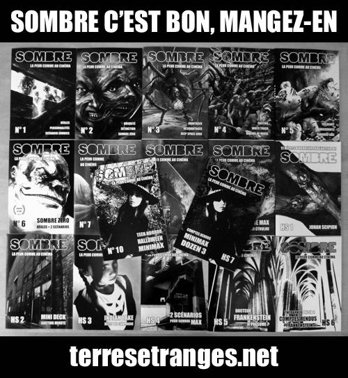 Ciné, Horreur, et JDR = Sombre - Page 14 Sombre_17nums