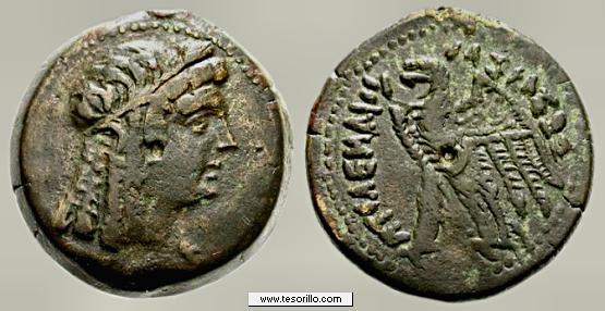 AE19 de Ptolomeo I. ΠTOΛEMAIOY. Chipre PtolomeoV