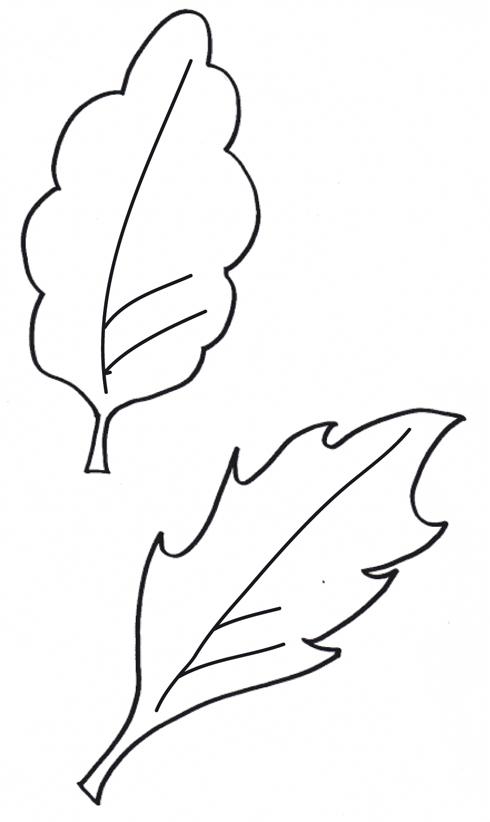 Jeu des images - Page 3 Feuille