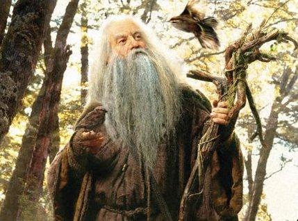 Favorite Wizard? Radagast2