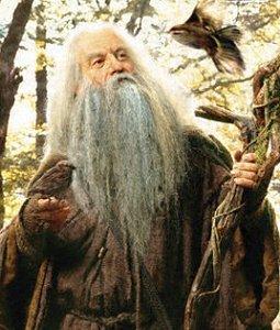 P.O Tolkien y su obra. Radagasttoppic