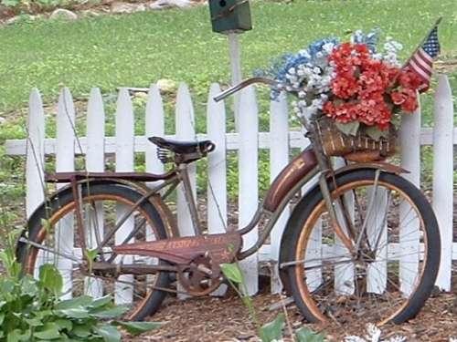 طبيعه تجنن Bicycle_2392