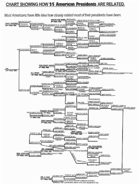 BLOODLINES OF ALL US PRESIDENTS 25Prez-460