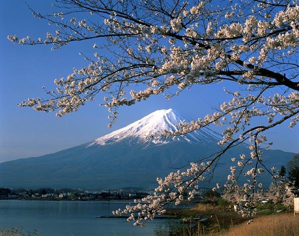 Cazzeggio!!! - Pagina 39 Mount_fuji_and_lake_yamanashi_pref_japan_photo_jnto