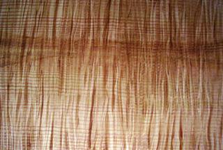 Anomalias em madeira Wood_tiger_maple