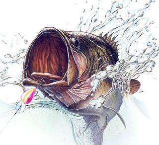 La importancia de realizar bien los nudos de pesca por José Manuel López Pinto / Lo que pasa si no se hacen bien... Basspic1