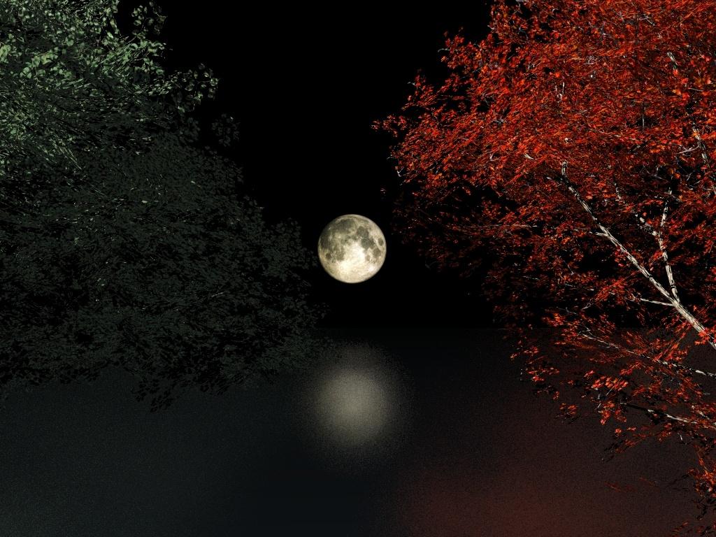 Bienvenidos al nuevo foro de apoyo a Noe #321 / 01.06.16 ~ 13.06.16 - Página 3 Autumn_moon_night