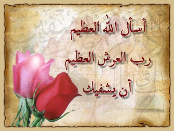 اخونا محمد زيكو الف سلامه A521635c8ad767856d2f3d5d94da5b89