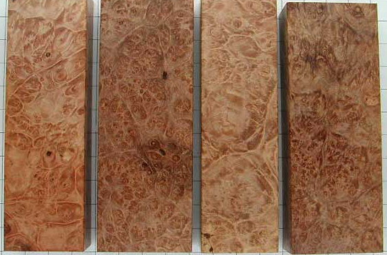 Wood porn Maple_Burl_Stabilized