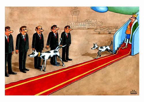 SNN Athaulphia - Serviço Nacional de Notícias - Página 2 Dogs_of_the_king_504665