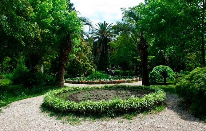 Что нужно обязательно посетить в Абхазии? Suxumskij-botanicheskij-sad