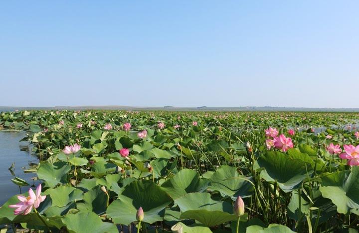 Красивейшие места Кубани - Топ 16. 5-6