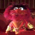 بإنفراد تام تحميل جميع مواسم مسرح العرائس المابيت شو الخمسة كاملة / The Muppet Show Full season 1- 5 Recastanimal